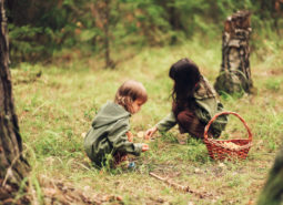 The Small children walk in the forest.